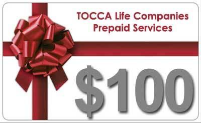 $100 Prepaid Services