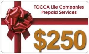 $250 Prepaid Services